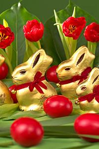 Златнoто зайче на LINDT – най-чаровното превъплъщение на истинския швейцарски шоколад
